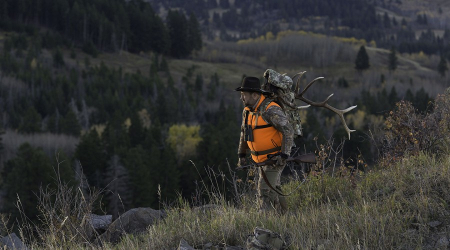 Plan Your Next Big-Game Hunt Now