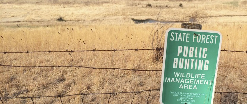 Find Success While Staying Safe on Public Land